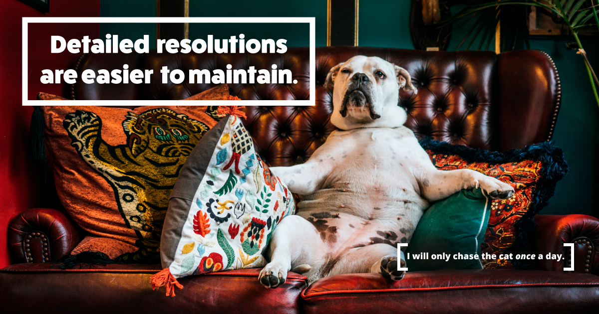 A bulldog lounges in a chair with colorful pillows. Small text reads